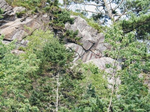 Raptor Crag